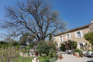Les arbres et la maison du Mas du Grand Jonquier